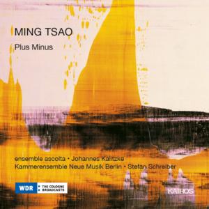 2017 Ming Tsao Plus Minus